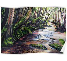 Along the Creek, Blue Mountains Poster