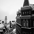 Winter Roof Ridge by MikaelJenei