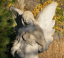 Autumn Angel by Marie Sharp