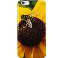 Sunny Susan and Friend iPhone Case/Skin