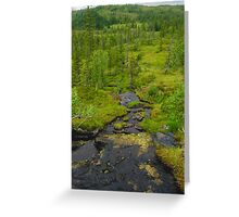 Overlooking the mountains Greeting Card