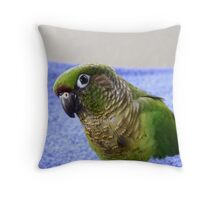 Do You Use A Good Fabric Softener? - Maroon-Bellied Conure - NZ Throw Pillow