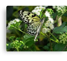 Dancing in the Flowers Canvas Print