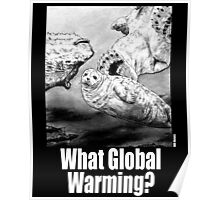 What Global Warming 1 Poster