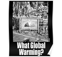 What Global Warming? 2 Poster