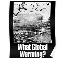 What Global Warming? 4 Poster