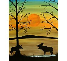 Meeting of the moose Photographic Print