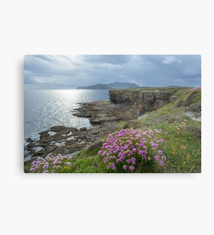 Muckross Head, Co. Donegal Metal Print
