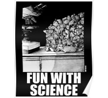 Fun with Science 1 Poster