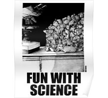 Fun with Science 1 (version 2) Poster