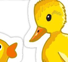 I Had Plastic Surgery Done Funny Ducks Sticker