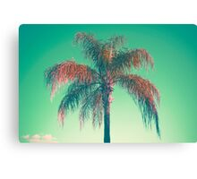 Red palm tree Canvas Print