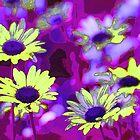 Daisy Crazy by Gilda Axelrod