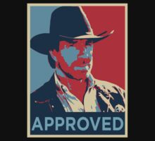 Chuck Norris Approved by amoya00