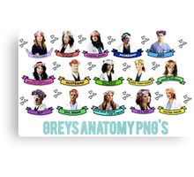 Gray's Anatomy Canvas Print
