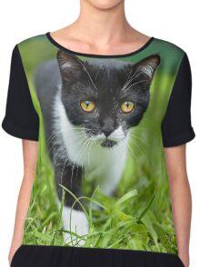 little black kitten in a grass Chiffon Top
