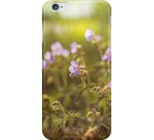 wild flowers in  light at sunset iPhone Case/Skin