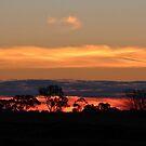 Kyabram Sunset by Jeanette Varcoe.