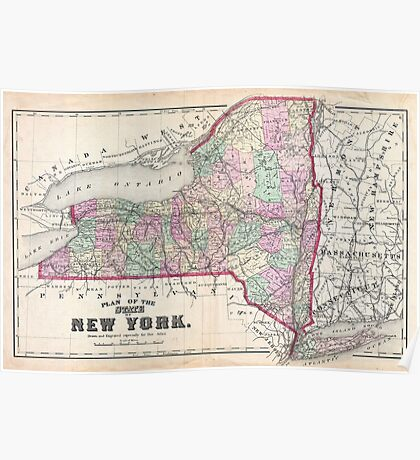 Vintage Map of New York (1873) Poster