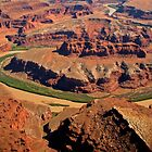 Aerial, The Gooseneck, Canyonlands National Park, Utah, USA by Margaret  Hyde