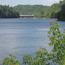 Covered Bridge over Gatineau River by caybeach