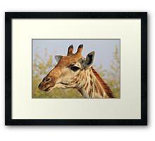 Giraffe - African Wildlife Background - Colorful Solitude Framed Print