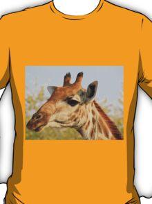 Giraffe - African Wildlife Background - Colorful Solitude T-Shirt