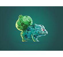 Porymon Bulbasaur | Pokemon Photographic Print