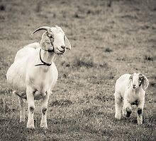 Mum and Kid - Lal Lal Falls by Andrew Dodds