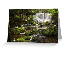 Horseshoe Falls, Mt Field, Tasmania Greeting Card