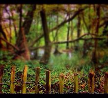Forest Fence by ShiggyClicks