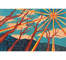 Sunshine and Trees Painting Photographic Print