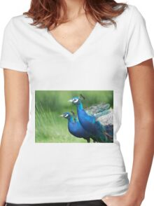Peacocks in the Park Women's Fitted V-Neck T-Shirt