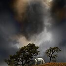 4263 by peter holme III