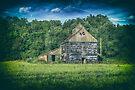 The Black Barn by Nigel Bangert