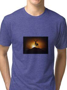 Deer on a Mountain Tri-blend T-Shirt