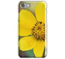 Prairie Tickseed iPhone Case/Skin