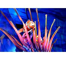 Marlin & (Peeking) Nemo - Finding Nemo: the Musical Photographic Print