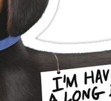 Buddy Secret Life of Pets Sticker
