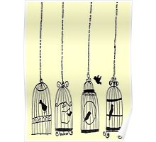 bird cage vintage (TY) Poster