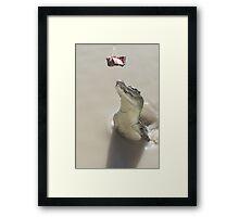 Spy Hop Framed Print
