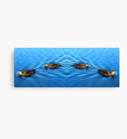 Tranquil Ducks Canvas Print