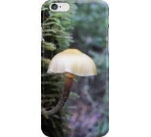 An elegant tree hugger iPhone Case/Skin