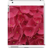 Make Room For Me iPad Case/Skin