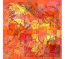 Abstract Shapes Over Daisies: Maps & Apps Series Photographic Print
