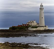 St Mary's Lighthouse by Violaman