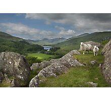 Y Pincin Snowdonia Photographic Print
