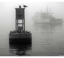 In the Midst of a Fog Photographic Print
