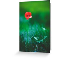 Weeping Beauty Greeting Card