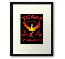 team valor back side Framed Print